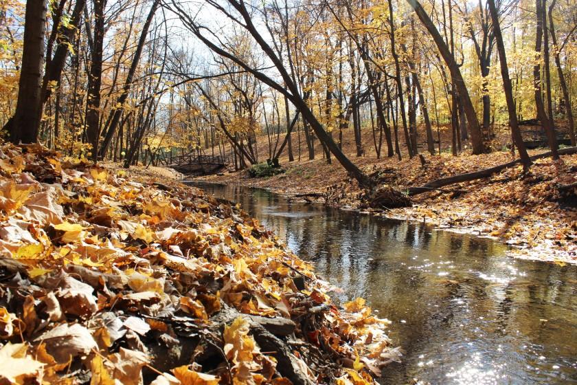 autumn-walk-10-21-16-34