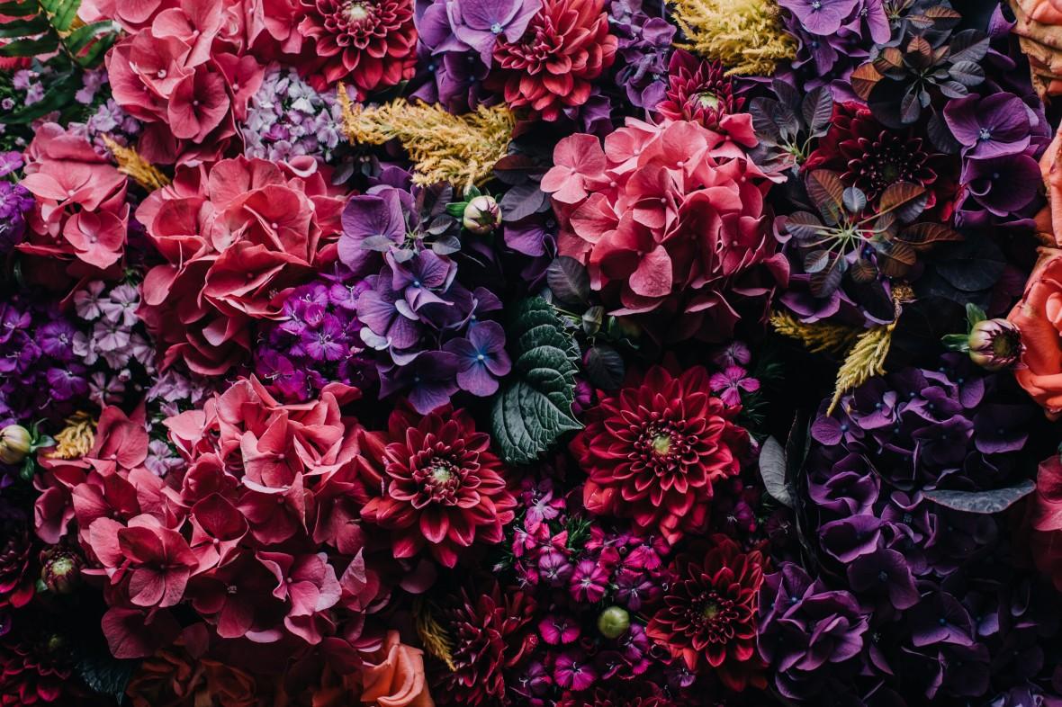 death_to_stock_photography_bonus_floral_6